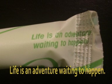 life is an adventure waiting to happen